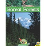 Boreal Forests, by Pat Miller-Schroeder