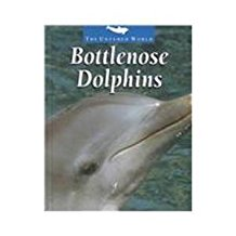 Bottlenose Dolphins, by Pat Miller-Schroeder