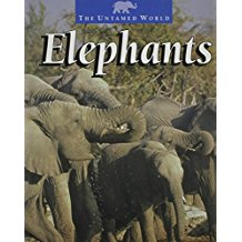 Elephants, original edition by Pat Miller-Schroeder, updated by Karen Dudley and Marie Levine