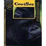 Gorillas, by Pat Miller-Schroeder