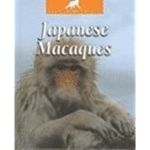 Japanese Macaques, by Pat Miller-Schroeder