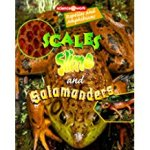 Scales, Slime, and Salamanders, by Patricial Miller-Schroeder