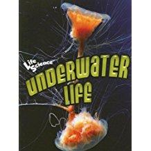 Underwater Life, by Pat Miller-Schroeder
